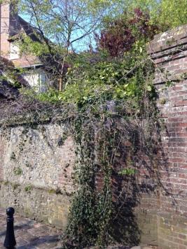 La rue Vieille, bordée d'anciennes maisons semble suspendue hors du temps.