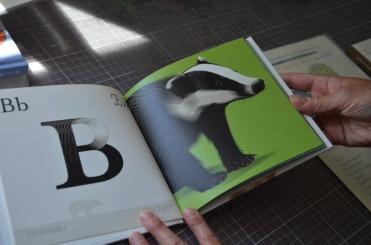 ABC animaux ABC animals